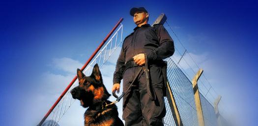 Охрана объектов: основные моменты и особенности